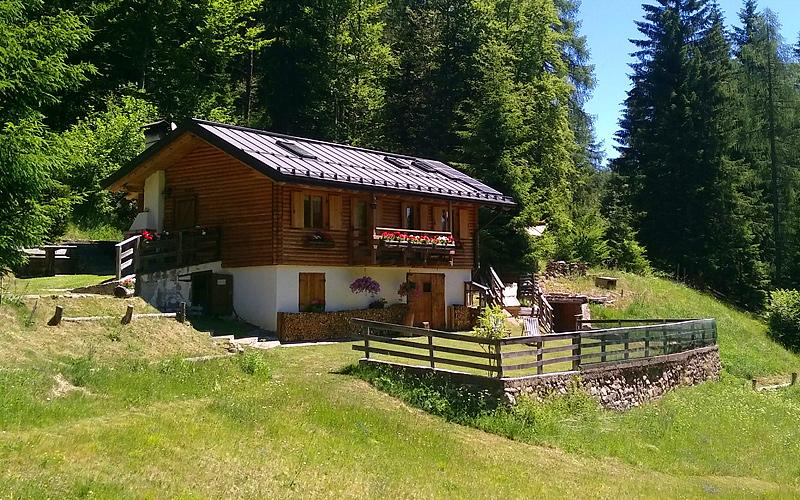 Trentino affittasi baita Cembra