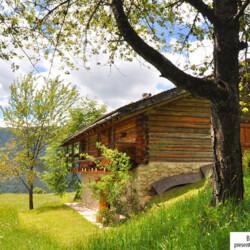 baita affitto Trentino San Martino di Castrozza